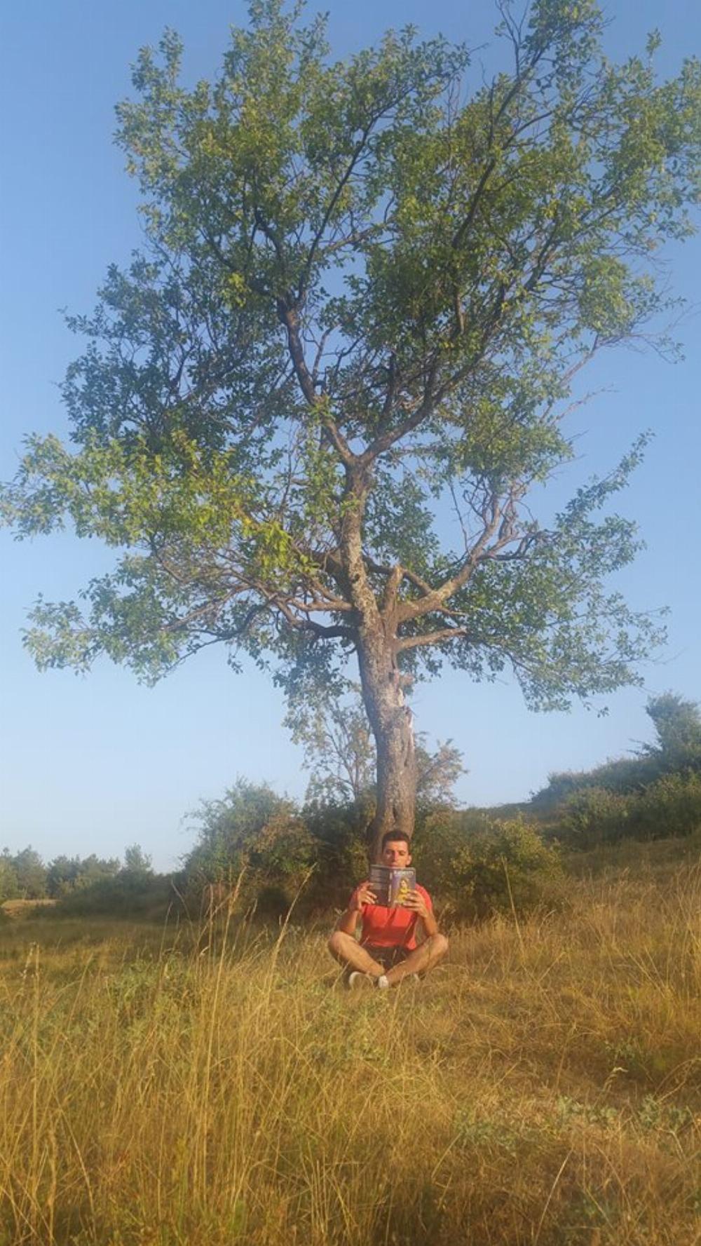 Nardi Meli - Mali i Dajtit